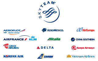 SkyTeam Partners